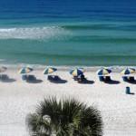 NETRESULTS Tampa Beach